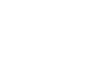 logo-bedline